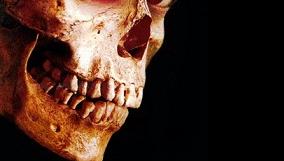 Зловещие мертвецы: страхи Сэма Рэйми...