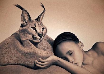 Леонардо Ди Каприо защита животных